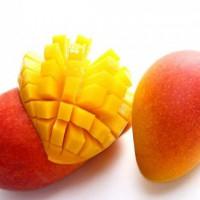 Hainan Imperial Concubine Mango