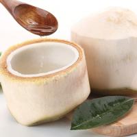 Direct selling fresh Hainan coconut