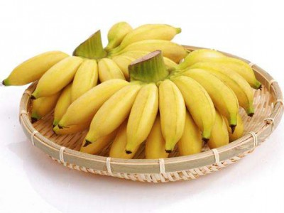 Import of Imperial Banana from Philippines